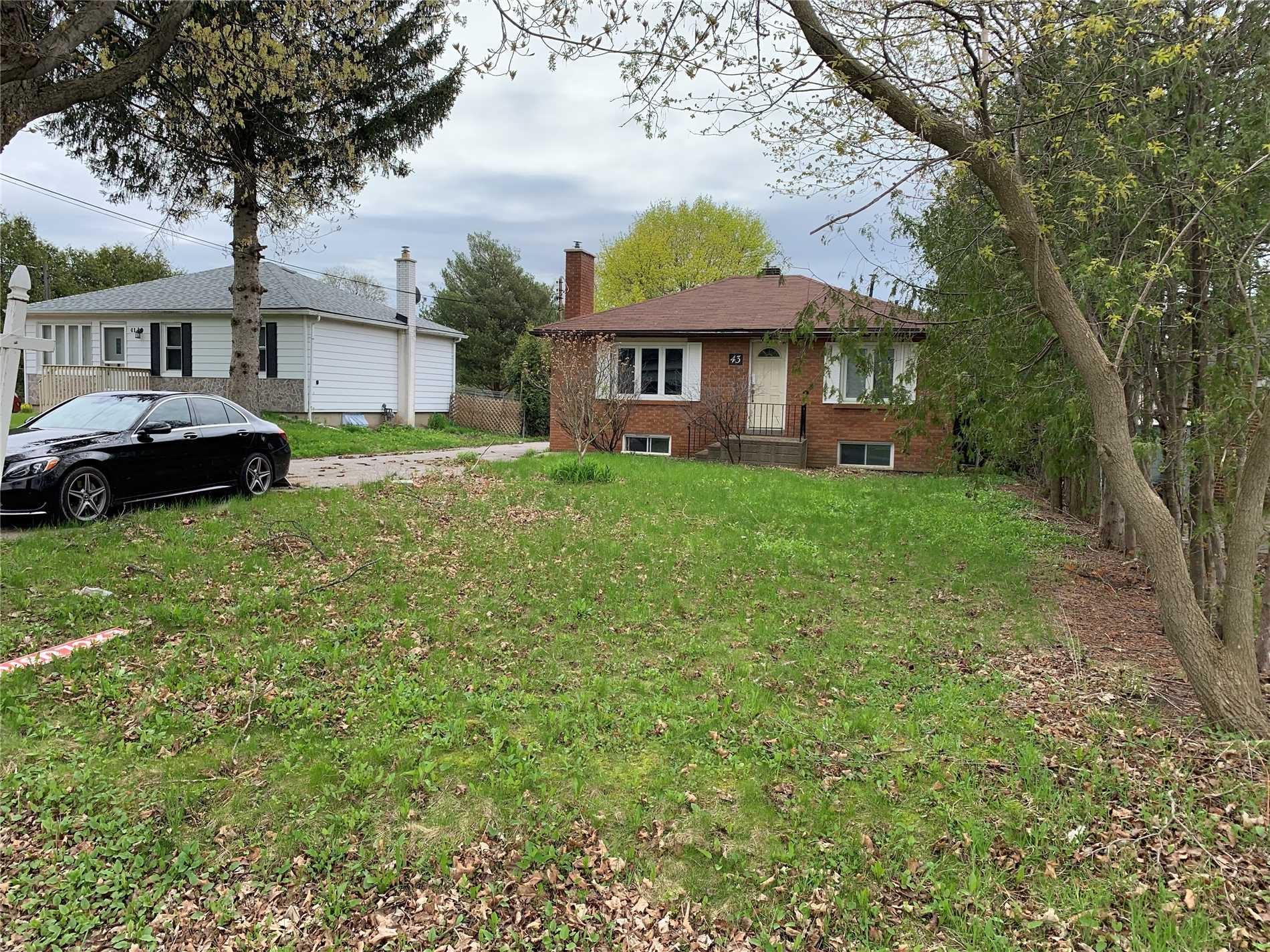 43 Maple Grove Ave, Richmond Hill N4454888