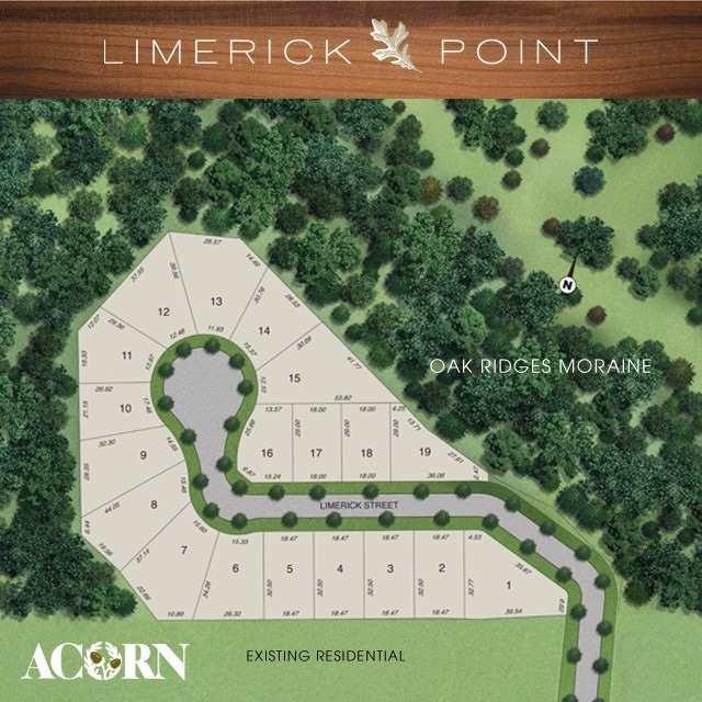 Lot 13 Limerick St, Richmond Hill N4470483