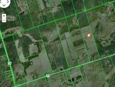 7486 Old Homestead Rd, Georgina N4650713