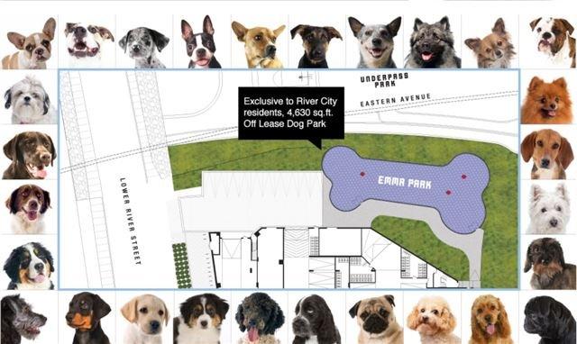 #914 - 170 Bayview  Ave, Toronto C4007444