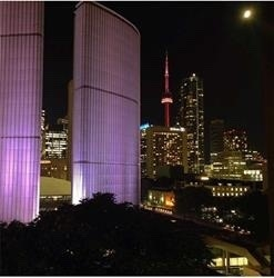 #1007 - 111 Elizabeth St, Toronto C4317238