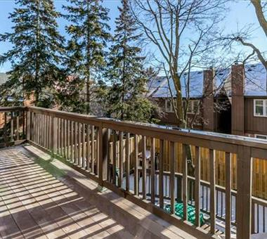 36 Fairground Lane, Vaughan N3404683