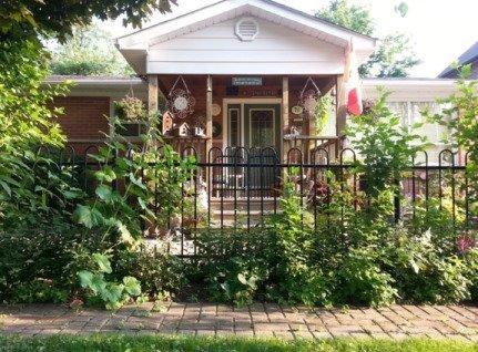 78 Elm Grove Ave, Richmond Hill N3847330