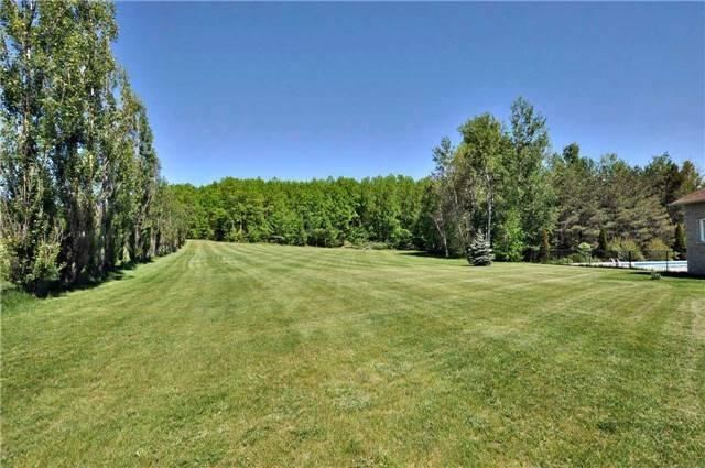 67 Manor Ridge Tr, East Gwillimbury N3910157