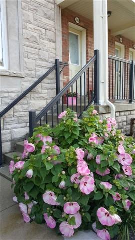 190 Louisbourg Way, Markham N4057546