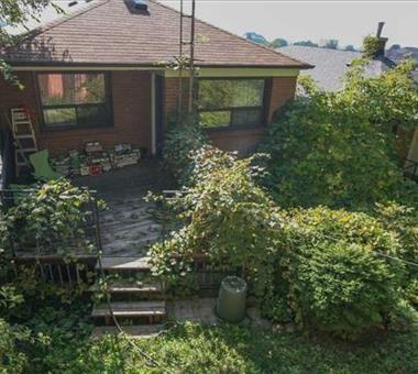 54 Cameron Ave, Toronto W3361133