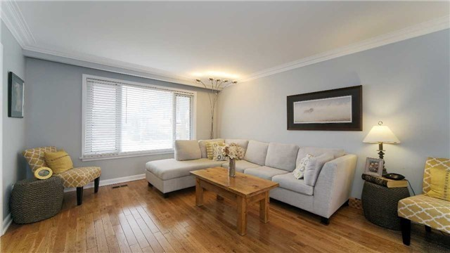 962 Glencairn Ave, Toronto W3994688