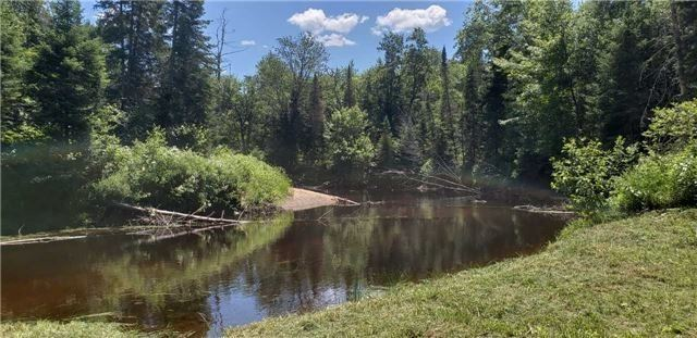 N/A Black River Rd, Bracebridge X4347315