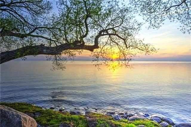 1729 Lakeshore  Dr, Ramara S4370788