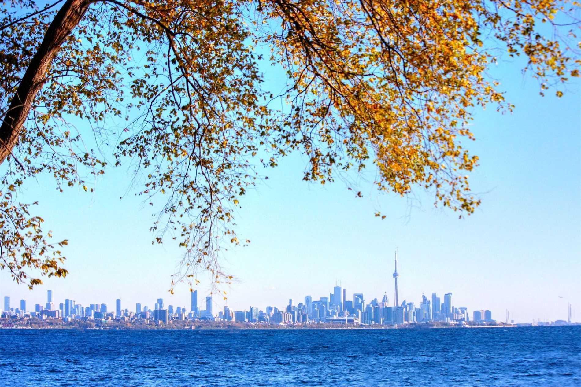 6 Sussex Dr, Toronto W4631069