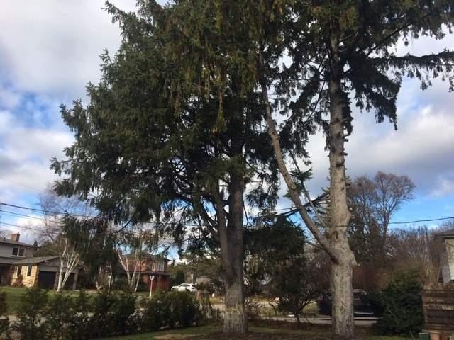234 Pinetree Way, Mississauga W4640860