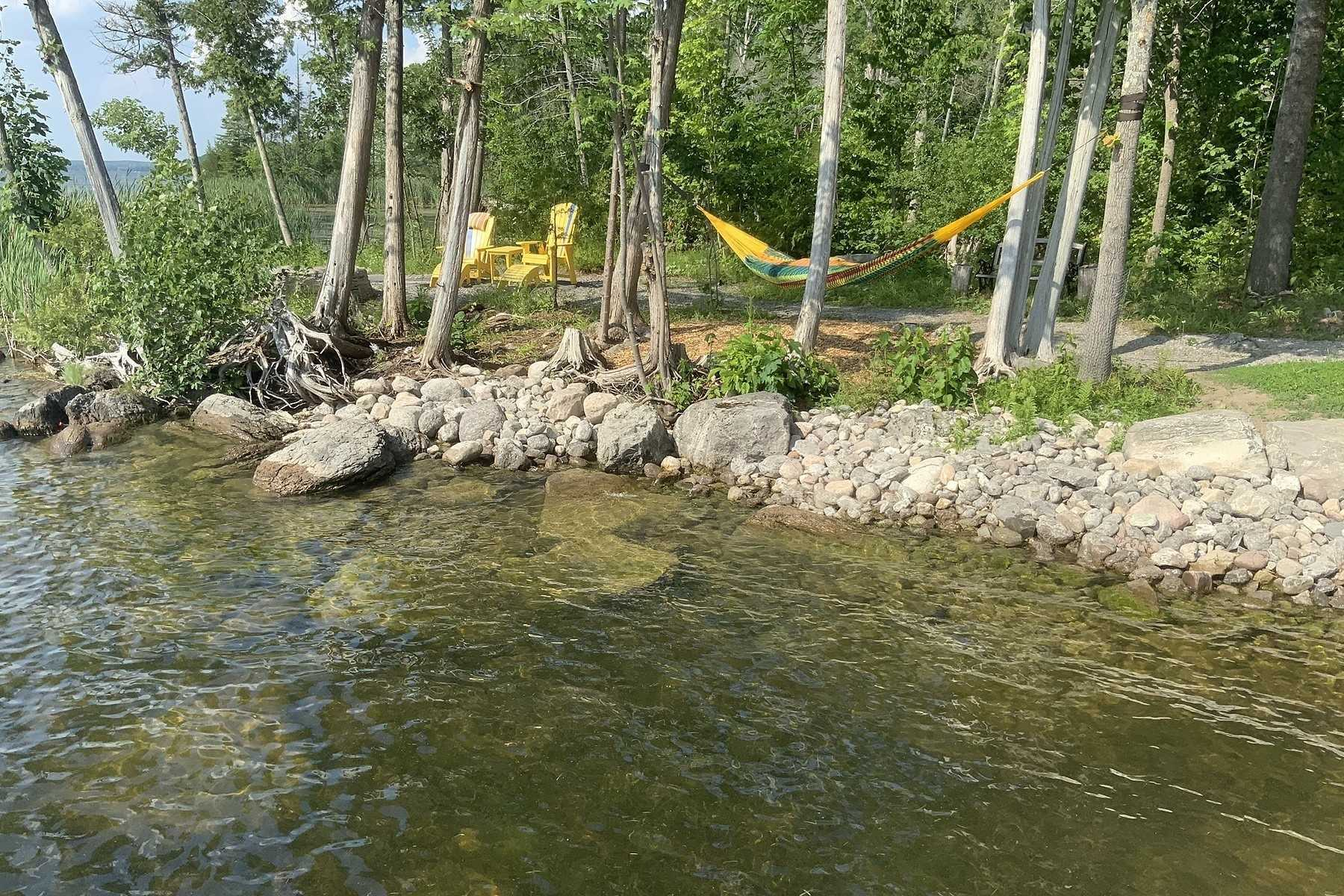 299 Bear Creek Rd, Peterborough X4384733
